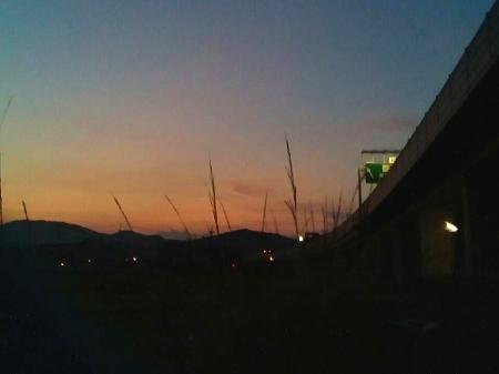 夏の夕暮れ散歩・・・!