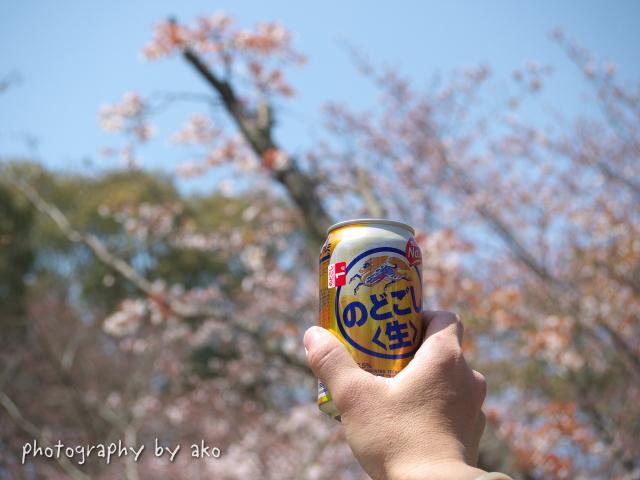 フライング・お花見!^^;