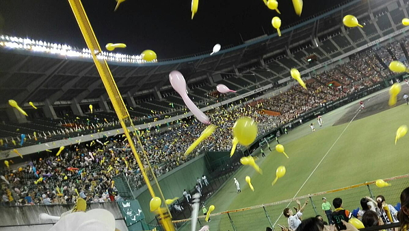 プロ野球2軍戦、阪神vs広島!