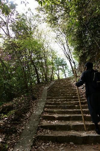 mini登山・・・?^^;